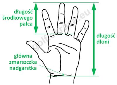 Pomiar wielkości dłoni golfisty