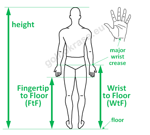 Measurement wrist and fingertip to floor distance