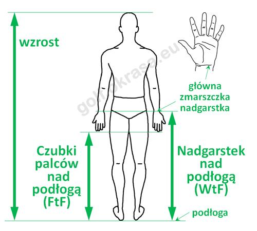 Pomiar wysokości nadgarstka i palców